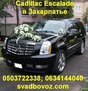VIP перевозки по территории Закарпатской области
