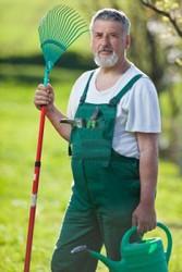 Садовник-мужчина в Польшу