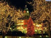 Тур на Рождество в Закарпатье и в Карпатах