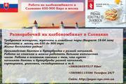 Работа на Производство булочек и багетов в Словакии 650-900 евро в мес