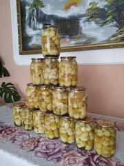 Продам гриби мариновані та сухі